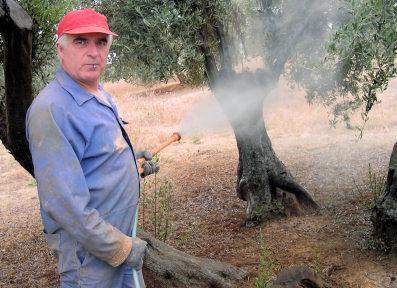 Entrevista a Benito García Burgos, agricultor y dirigente local de ASAJA