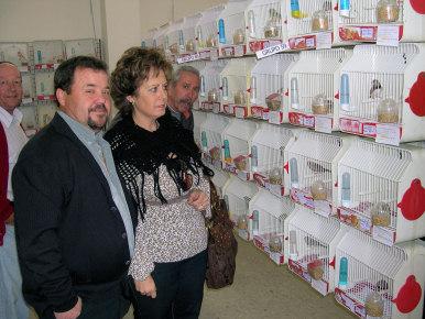 'La Farola' organiza su XV Exposición Ornitológica