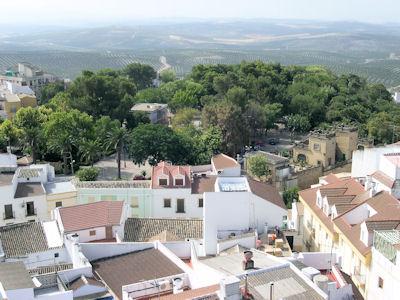 El Ayuntamiento de Porcuna busca himno y bandera para el municipio