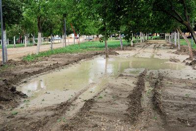 Quejas del Ayuntamiento de Porcuna por las inundaciones en Alharilla